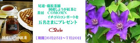 茶 国産 尾道 藤原茶舗