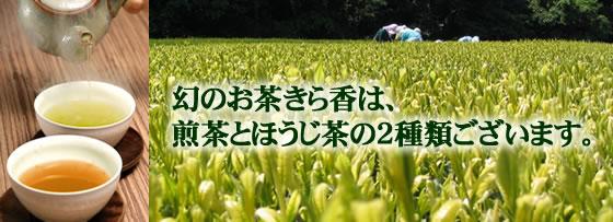 新品種・きら香【茶】TOP